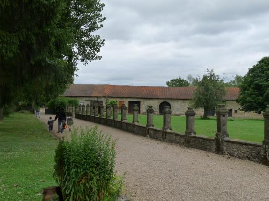 L'allée bordée de peupliers menant au château